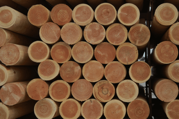 Bois-ronds-1